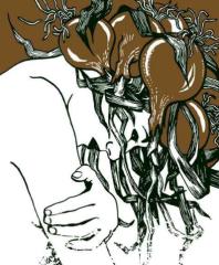 Les attaques de la boulangerie - illustration 1