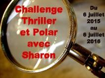 Challenge thriller et polar 2